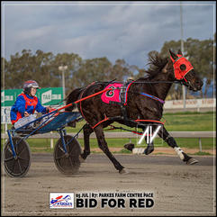 BID FOR RED, driven by Stephanie Burley, wins at the Parkes Trots last 05 July 2020.