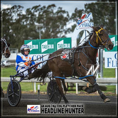 HEADLINE HUNTER, driven by Justin Reynolds, wins at Parkes Trots last 16 August 2020