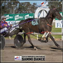 SAMMI DANCE, driven by Jason Hewitt, wins at Parkes Trots last 30 August 2020