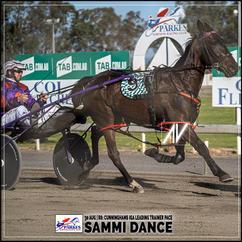 SAMMI DANCE, driven by Jason Hewitt, wins at Parkes Trots last 30 August 2020