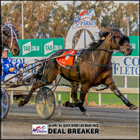 DEAL BREAKER, driven by Tom Pay, won at the Parkes trots