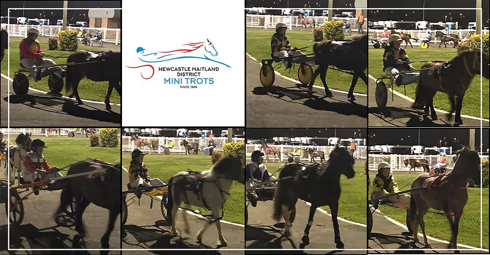 Newcastle Maitland Mini Trots First Race Meeting For Season 2019-2020