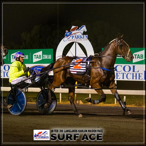 SURF ACE, driven by Nathan Turnbull, won at the Parkes Trots