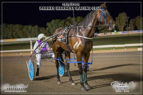 R9 - HRNSW GUARANTEED TWO YEAR OLD PACE - DIDNT I - Kenneth Wade - Kenneth Wade - 105