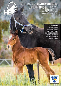 Horse Photography by Clarinda Park Photograhy | Sparky, a Four Starzzz Shark colt out of Speriamo. Cover Photo of Australasian Standardbred Stallion Guide 2018-2019