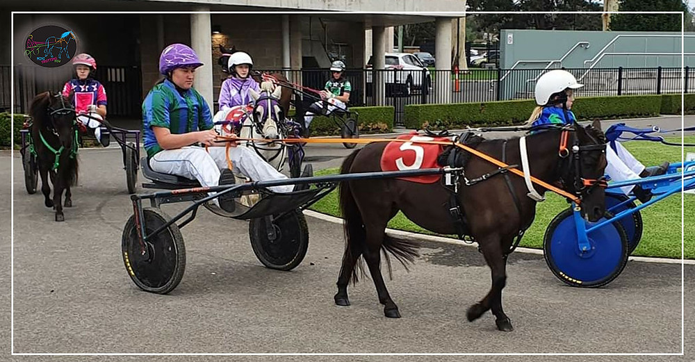 Menangle Park Mini Trots - Mackenzie Gallagher with Crystal Ball