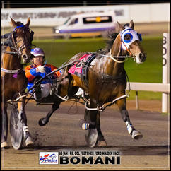 BOMANI, driven by Nathan Turnbull, wins at Parkes Trots