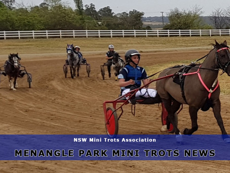 Menangle Park Mini Trots Holds Its First Gala Training Day