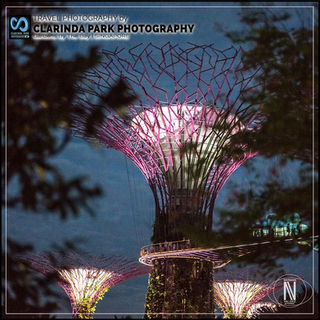 TRAVEL PHOTOGRAPHY: Gardens By The Bay, SINGAPORE
