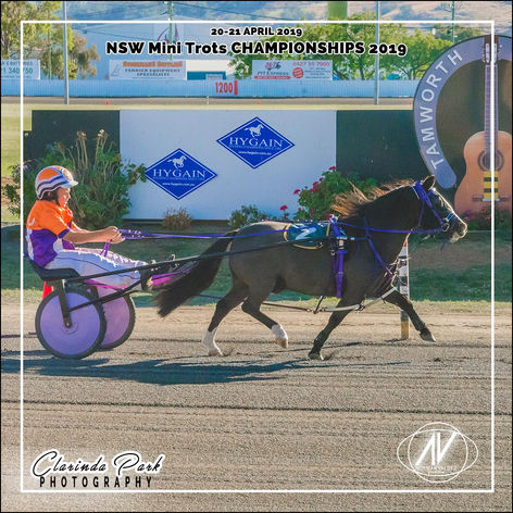 MINI TROTS RACING GALLERY - 20190420 - 0