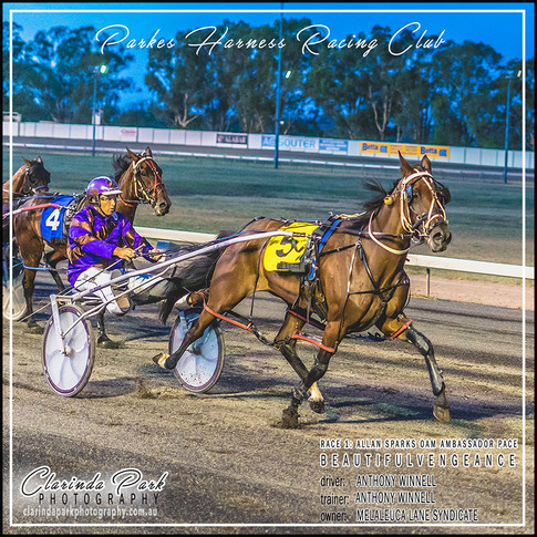 R1 - ALLAN SPARKS OAM AMBASSADOR PACE - BeautifulVengeance - Anthony Winnell - 002