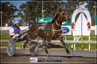 BRETT HUTCHINGS - Clarinda Park IT Leading Driver Of The Year 2020
