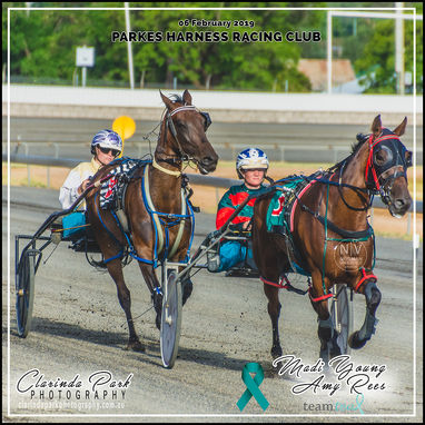 "06 FEBRUARY 2019 - Parkes Harness ""TEAM TEAL HARNESS RACING"""
