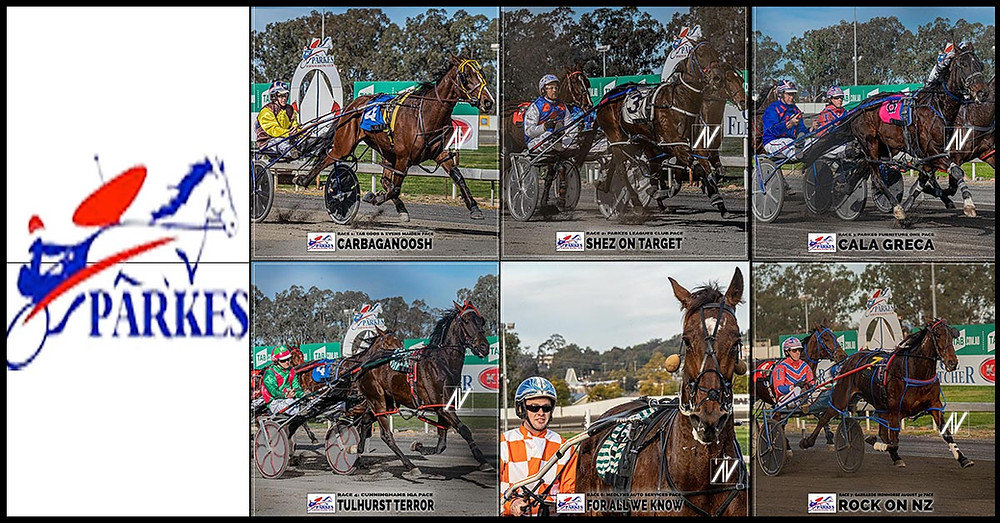 PARKES HARNESS Racing Club winners on 2 August 2020: Carbaganoosh - Shez On Target - Cala Greca - Tulhurst Terror - Camanchi Warrior - For All We Know - Rock On NZ