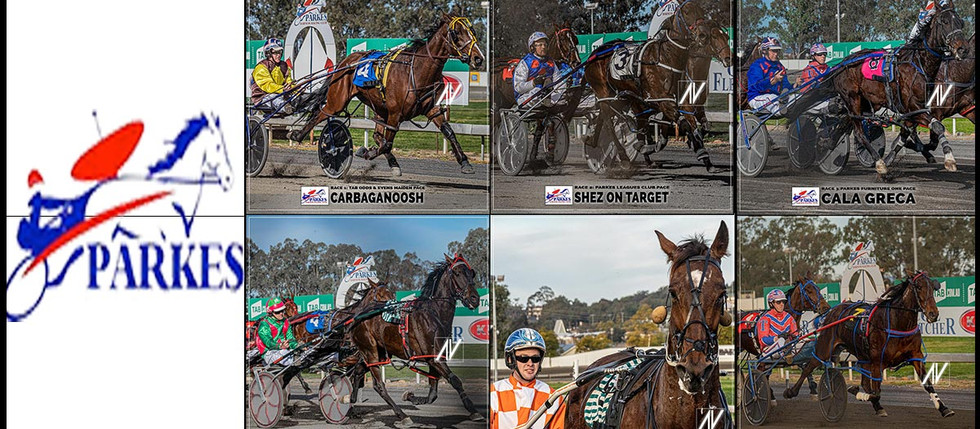 Congratulations to PARKES HARNESS Racing Club Race Meeting Winners - 02 AUGUST 2020