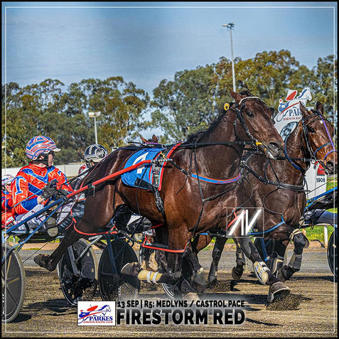 FIRESTORM RED, driven by Mitch Turnbull, wins at Parkes Harness.
