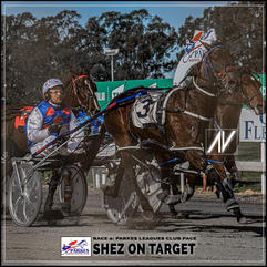 SHEZ ON TARGET driven by Brett Hutchigns  at the Parkes Trots