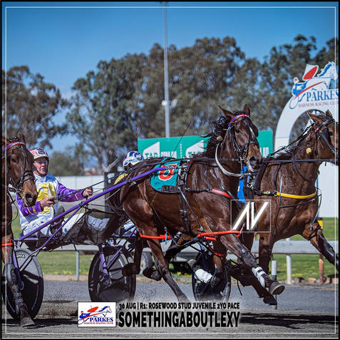 SOMETHINGABOUTLEXY, driven by Bernie Hewitt, wins at Parkes Trots last 30 August 2020