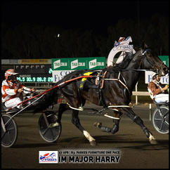 IM MAJOR HARRY, driven by Angela Hedges, won at the Parkes Trots