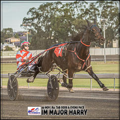 IM MAJOR HARRY, driven by David McKenzie, wins at Parkes Harness