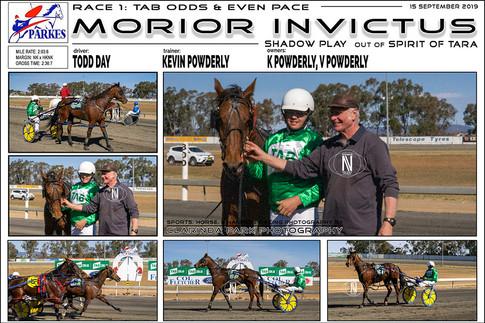 Morior Invictus wins at Parkes Harness Trots