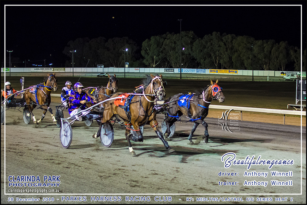 Race 7: The Medlyns Castrol Gig Series Heat 2 has been won by Beautifulvengeance driven and trained by Anthony WInnell.