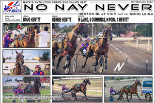 NO NAY NEVER driven by Doug Hewitt and trained by Bernie Hewitt.