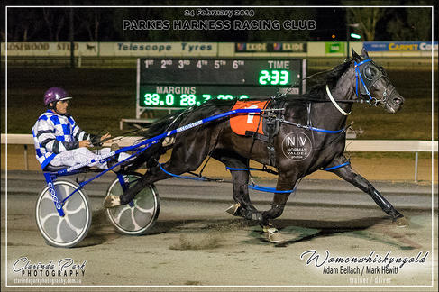 Race 8 - GET REAL SUPPORT TEAL 3YO COLTS AND GELDINGS - WOMENWHISKYNGOLD - Mark Hewitt