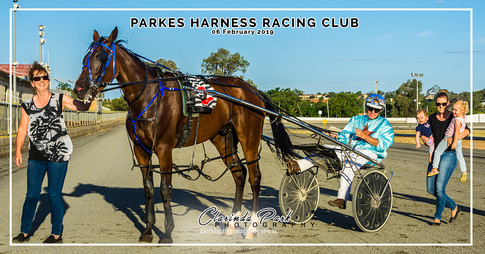PARKES HARNESS RACING CLUB - Pocket Beauty and Steve Dowton
