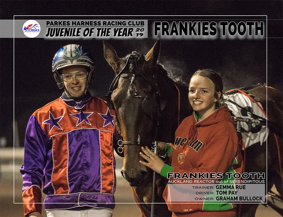 2019 PARKES Juvenile Of The Year 2019 - FRANKIES TOOTH