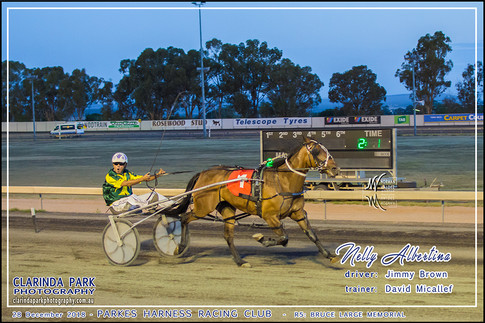 Race 5 - Bruce Large Memorial - 02 - Facebook Uploads - NELLY ALBERTINA - Jimmy Brown - 001