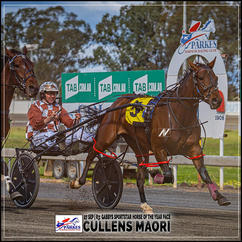 CULLENS MAORI, driven by Nathan Townsend, wins at Parkes Harness
