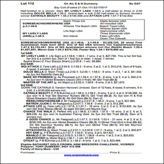 2019 Bathurst Gold Crown Yearling Sale - Lot 112