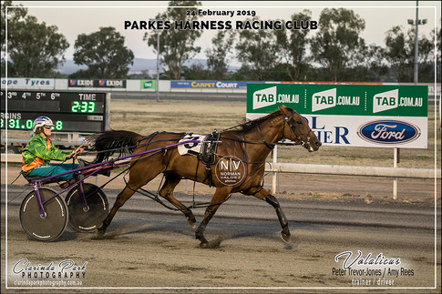 R4 TERRY BROTHERS CARPET COURT Pace - VOLATICUS - Amy Rees - 102