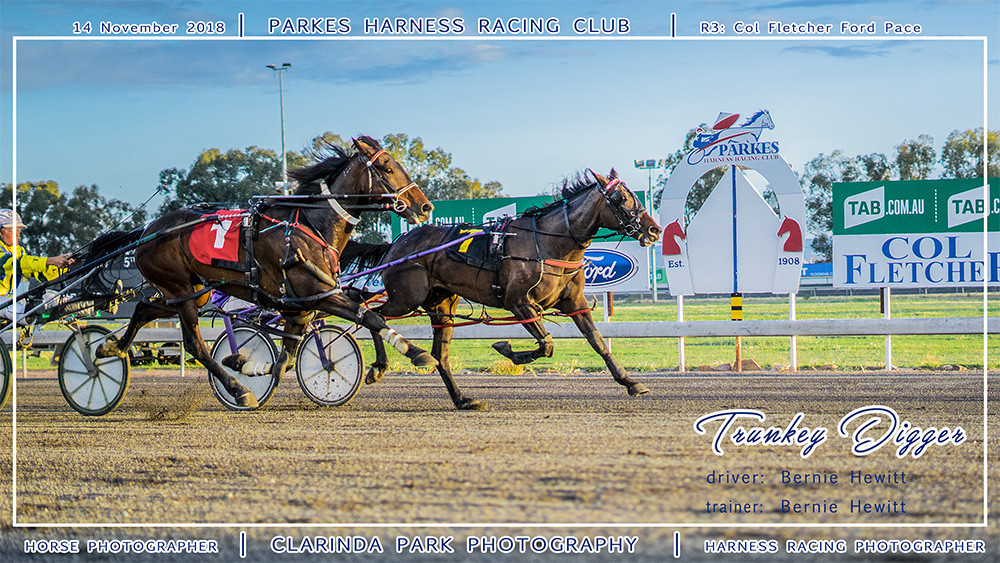 Parkes Harness | 14 November 2018 | Race 3 Col Fletcher Ford Pace winner | Trunkey Digger | Harness Racing Photos | Horse Photographer | Clarinda Park Photography