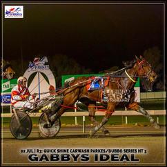 GABBYS IDEAL, driven by Nathan Hurst, won at the Parkes Trots