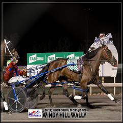 WINDY HILL WALLY, driven by Amanda Turnbull, wins at Parkes Trots