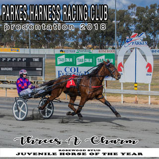 Parkes Harness Awards and Presentation 2018 - JUVENILE HORSE OF THE YEAR
