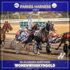 PARKES HARNESS - Race 1 - CLARINDA PARK PACE - WOMENWHISKYNGOLD wins at Parkes Trots