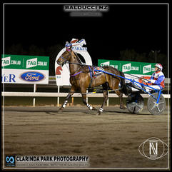 PARKES HARNESS - Race 8 - MEDLYNS CASTROL THREE YEAR OLD PACE - BALDUCCI NZ wins at Parkes Trots
