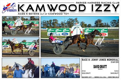 Parkes Harness - Kamwood Izzy