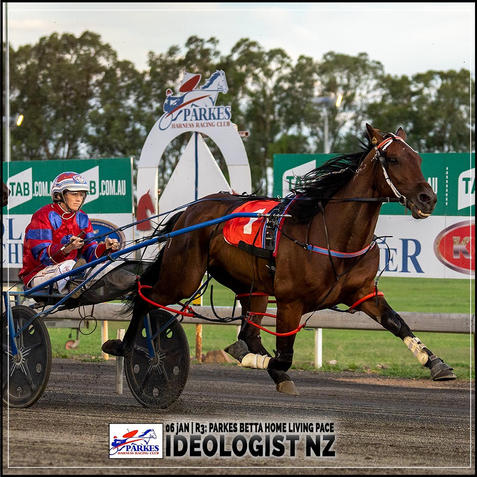 IDEOLOGIST NZ, driven by Amanda Turnbull, wins at Parkes Trots