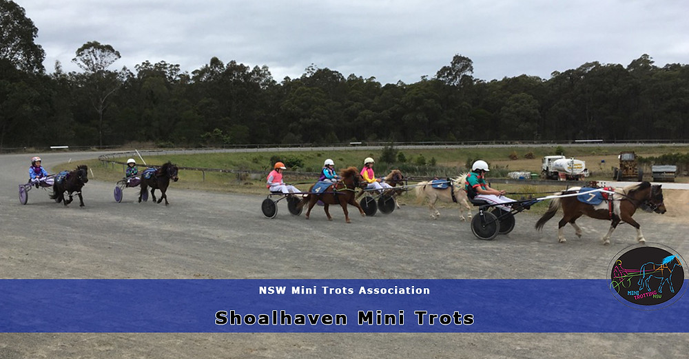 Shoalhaven Mini Trots Hit The Track Again