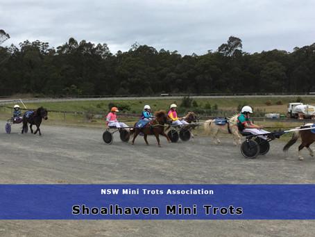 Shoalhaven Mini Trots Hit The Track Again