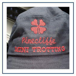 Pinecliffe Mini Trotting