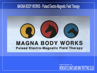 Magna Body Works Pulsed Electro Magnetic Field Therapy
