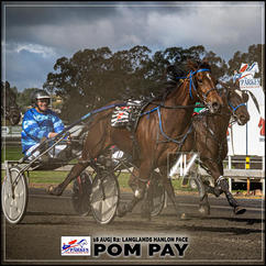 POM PAY, driven by Graham Betts, wins at Parkes Trots last 16 August 2020