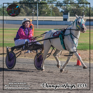 Championships 2018: Siarne Deeves with Willy Wagtail