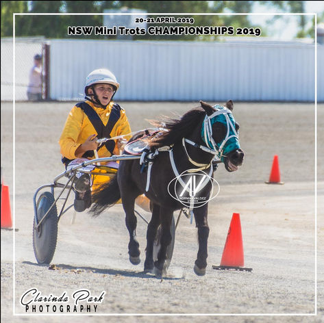 New South Wales Mini Trots Association Championships 2019 - Kalee Shackleford-Weller with Belladonna