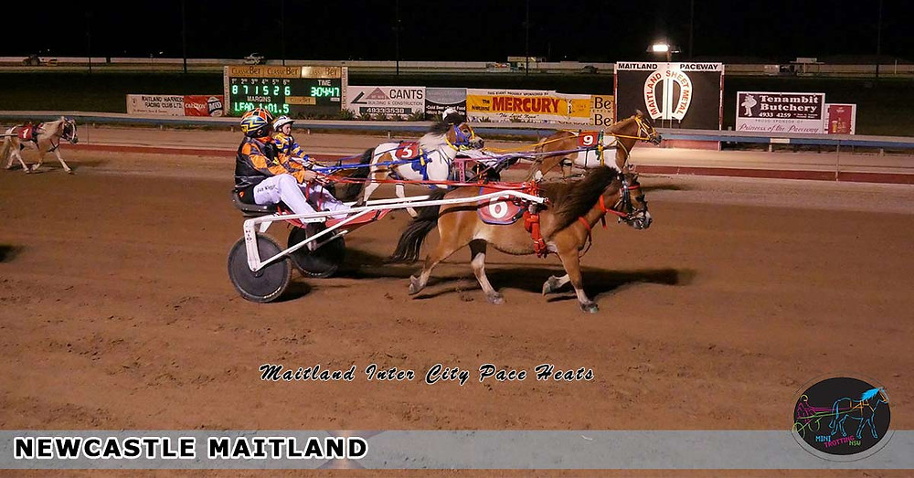 New South Wales Mini Trots Association - Maitland Inter City Pace Heats